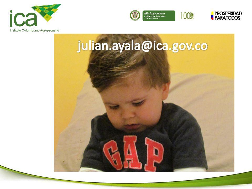 PROSPERIDAD PARA TODOS ca Instituto Colombiano Agropecuario MinAgricultura Ministerio de Agricultura y Desarrollo Rural PROSPERIDAD PARA TODOS ca Instituto Colombiano Agropecuario MinAgricultura Ministerio de Agricultura y Desarrollo Rural