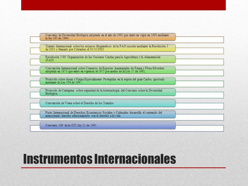 Instrumentos Internacionales Convenio de Diversidad Biológica adoptada en el año de 1992 que entró en vigor en 1993 mediante la ley 165 de 1994. Trata