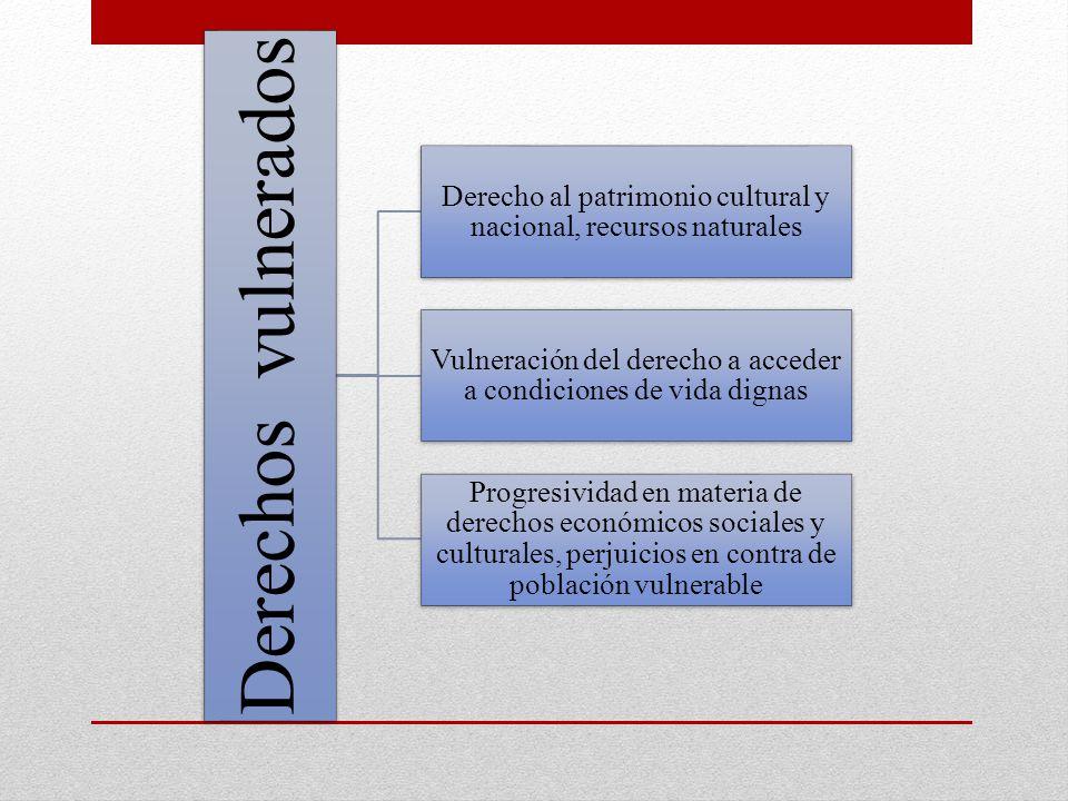 Derechos vulnerados Derecho al patrimonio cultural y nacional, recursos naturales Vulneración del derecho a acceder a condiciones de vida dignas Progr