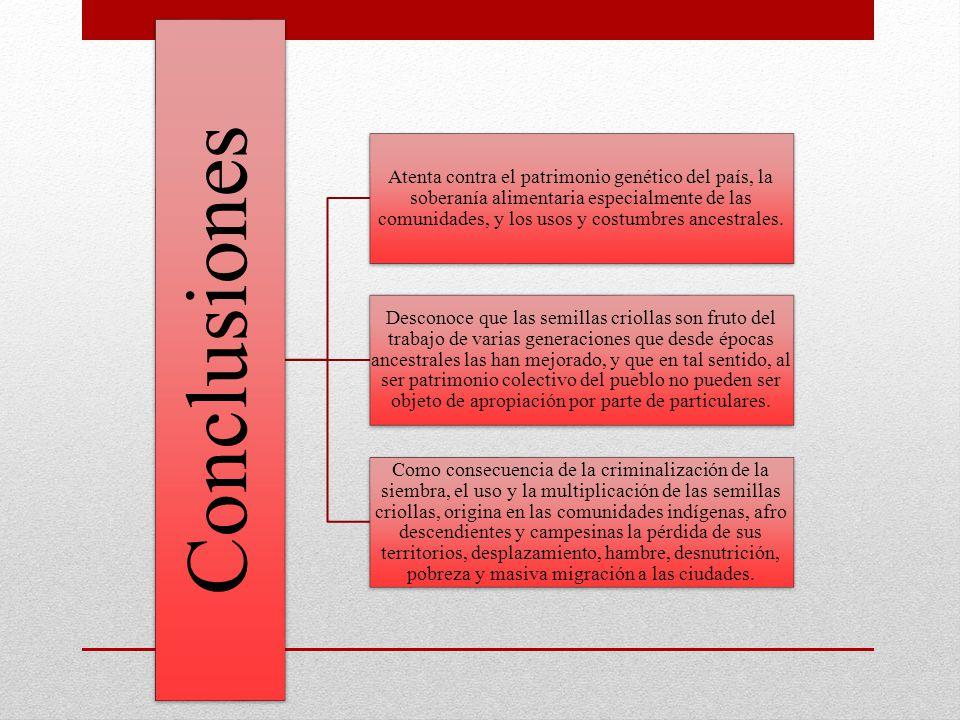 Conclusiones Atenta contra el patrimonio genético del país, la soberanía alimentaria especialmente de las comunidades, y los usos y costumbres ancestr