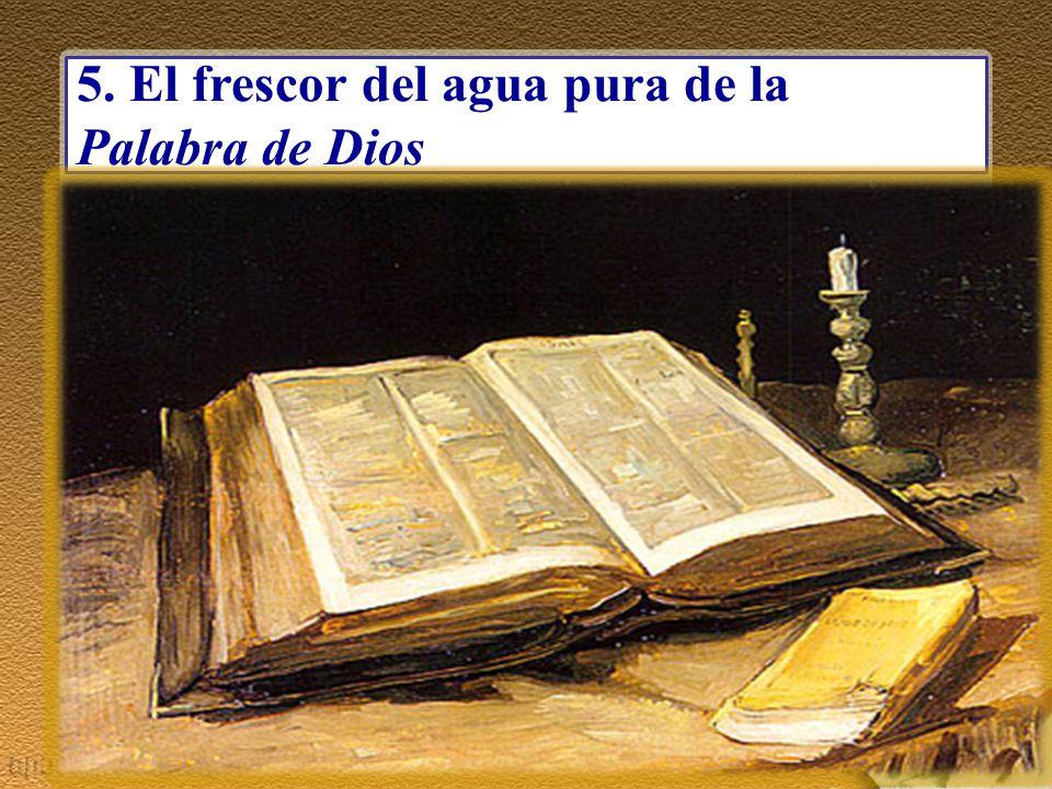 5. El frescor del agua pura de la Palabra de Dios