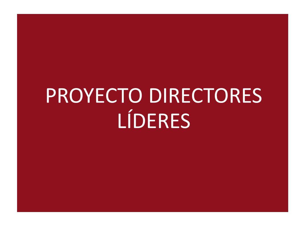 PROYECTO DIRECTORES LÍDERES