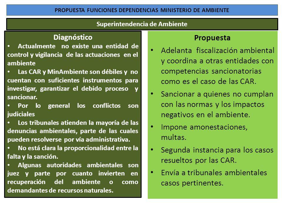 PROPUESTA FUNCIONES DEPENDENCIAS MINISTERIO DE AMBIENTE Diagnóstico Actualmente no existe una entidad de control y vigilancia de las actuaciones en el
