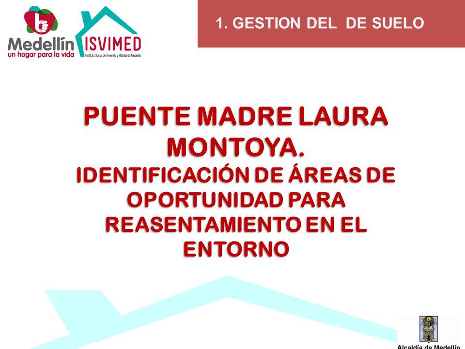 1.GESTION DEL DE SUELO PUENTE MADRE LAURA MONTOYA.