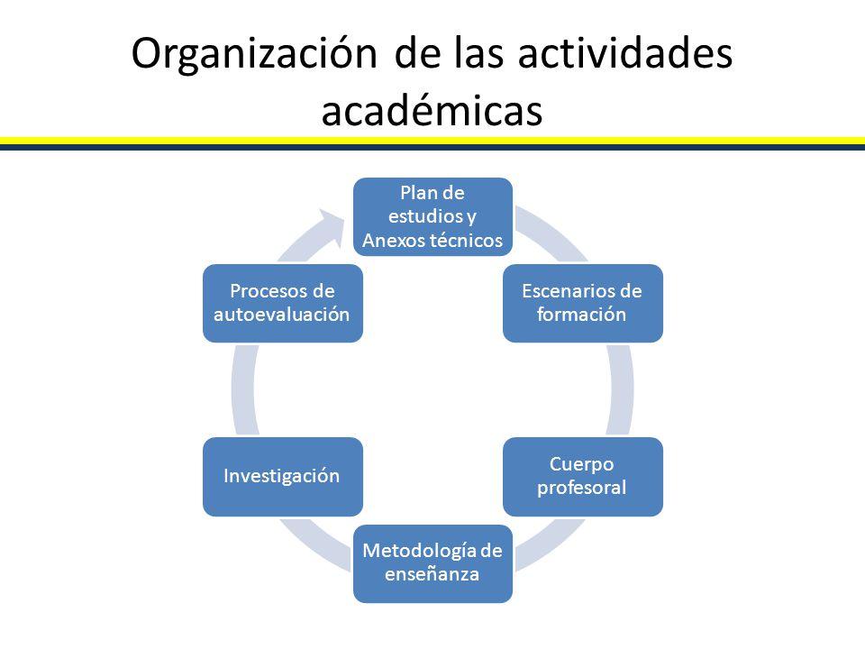 Organización de las actividades académicas Plan de estudios y Anexos técnicos Escenarios de formación Cuerpo profesoral Metodología de enseñanza Inves