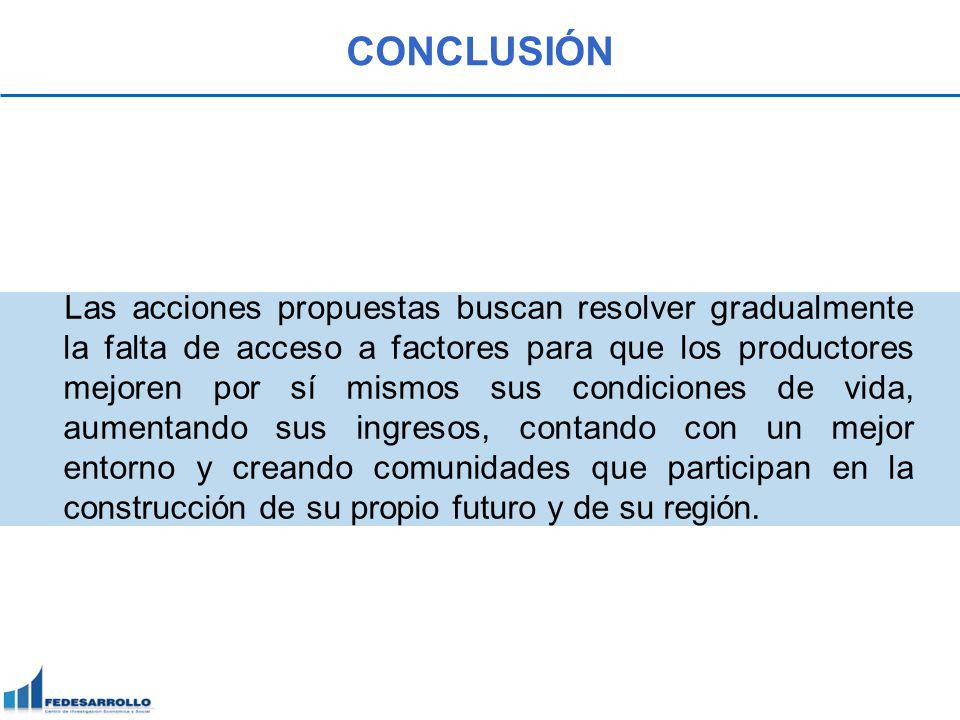 CONCLUSIÓN Las acciones propuestas buscan resolver gradualmente la falta de acceso a factores para que los productores mejoren por sí mismos sus condi