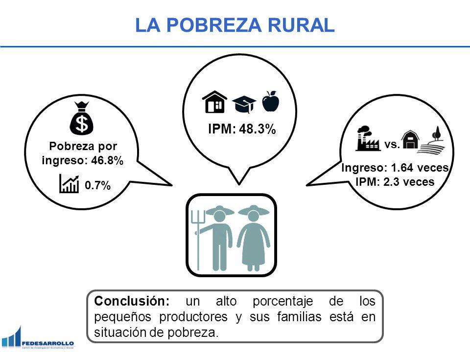 LA POBREZA RURAL Conclusión: un alto porcentaje de los pequeños productores y sus familias está en situación de pobreza. Pobreza por ingreso: 46.8% 0.