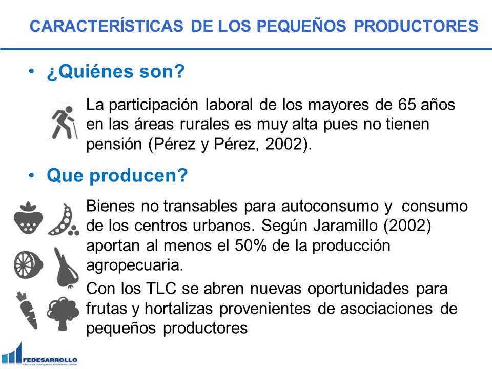 ¿Quiénes son? La participación laboral de los mayores de 65 años en las áreas rurales es muy alta pues no tienen pensión (Pérez y Pérez, 2002). Que pr