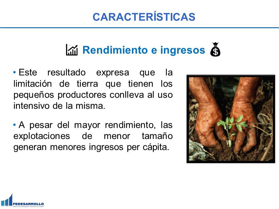 Este resultado expresa que la limitación de tierra que tienen los pequeños productores conlleva al uso intensivo de la misma. A pesar del mayor rendim
