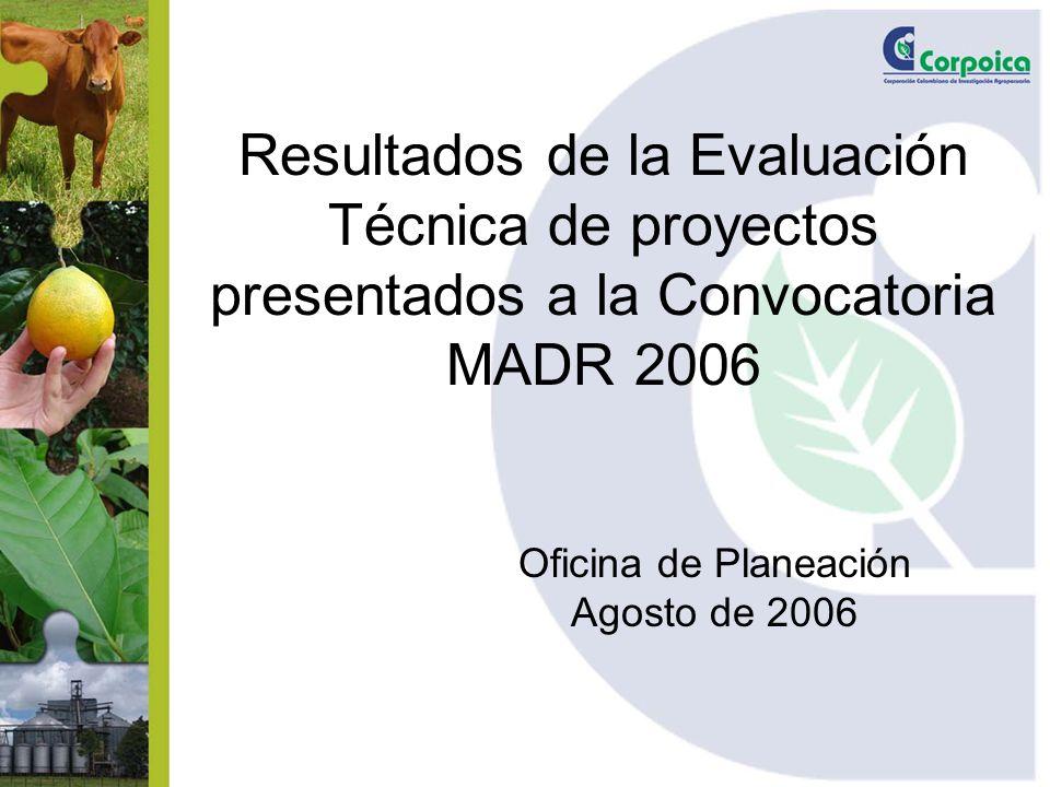 Resultados de la Evaluación Técnica de proyectos presentados a la Convocatoria MADR 2006 Oficina de Planeación Agosto de 2006