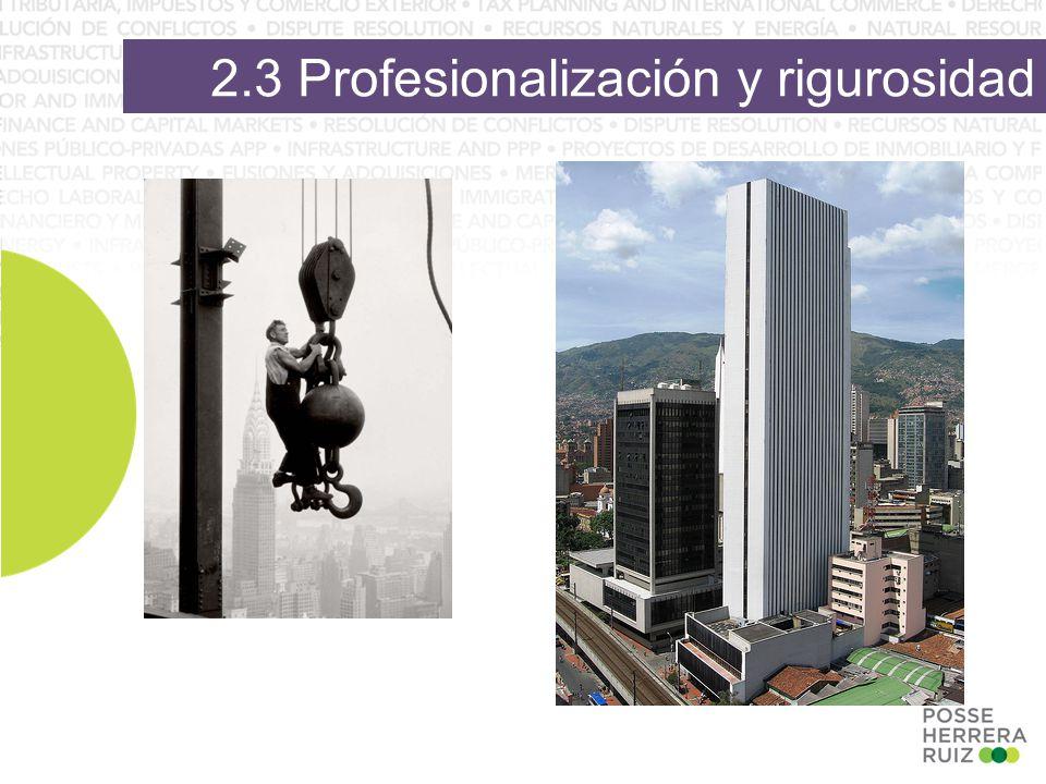 2.3 Profesionalización y rigurosidad