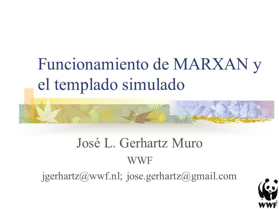 Funcionamiento de MARXAN y el templado simulado José L. Gerhartz Muro WWF jgerhartz@wwf.nl; jose.gerhartz@gmail.com