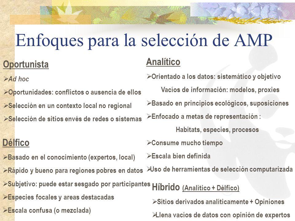 Enfoques para la selección de AMP Oportunista Ad hoc Oportunidades: conflictos o ausencia de ellos Selección en un contexto local no regional Selecció