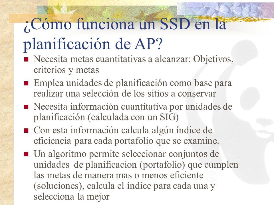 ¿Cómo funciona un SSD en la planificación de AP? Necesita metas cuantitativas a alcanzar: Objetivos, criterios y metas Emplea unidades de planificació