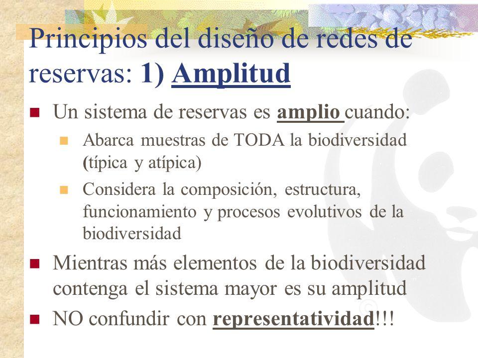 Principios del diseño de redes de reservas: 1) Amplitud Un sistema de reservas es amplio cuando: Abarca muestras de TODA la biodiversidad (típica y at