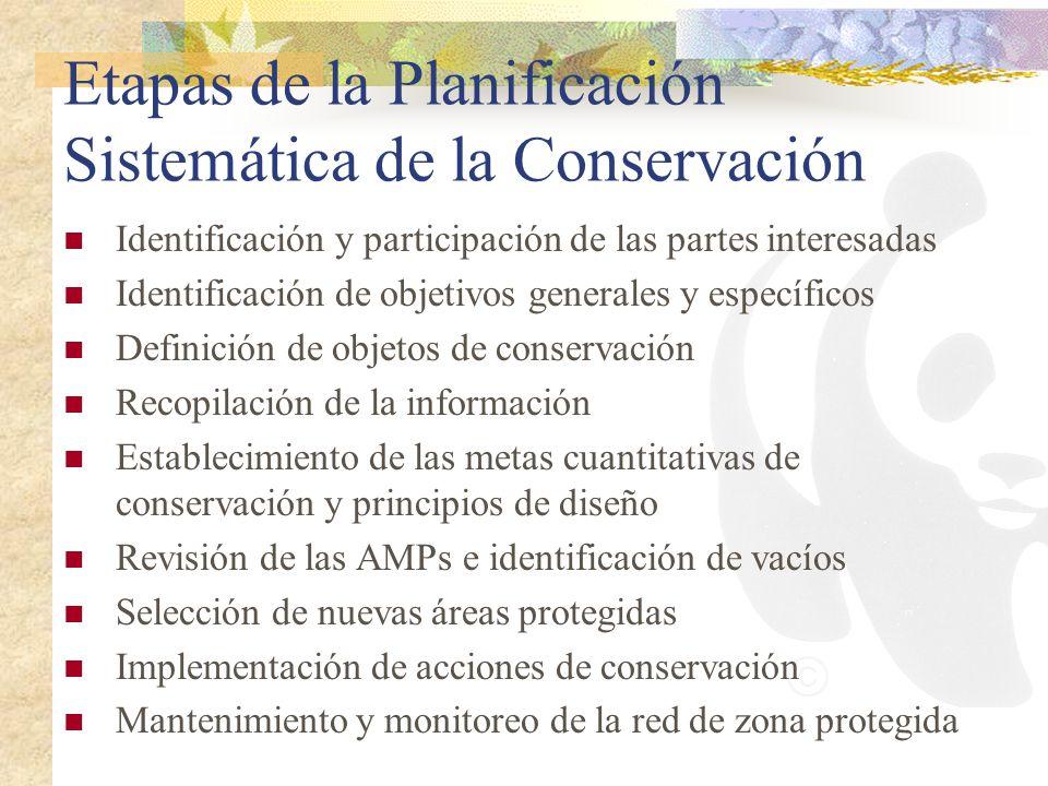 Etapas de la Planificación Sistemática de la Conservación Identificación y participación de las partes interesadas Identificación de objetivos general