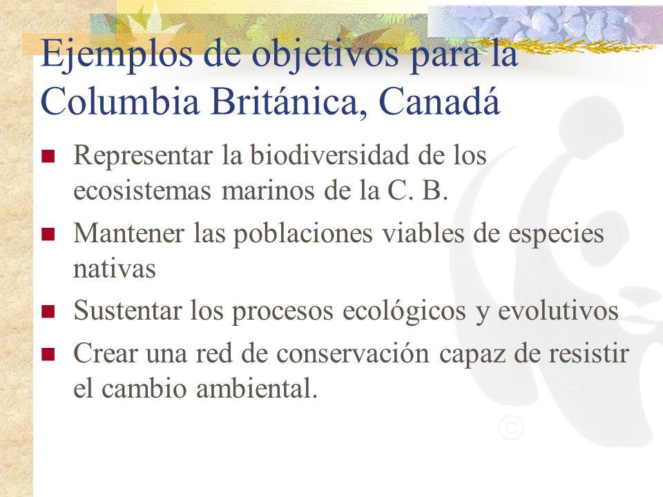 Ejemplos de objetivos para la Columbia Británica, Canadá Representar la biodiversidad de los ecosistemas marinos de la C. B. Mantener las poblaciones