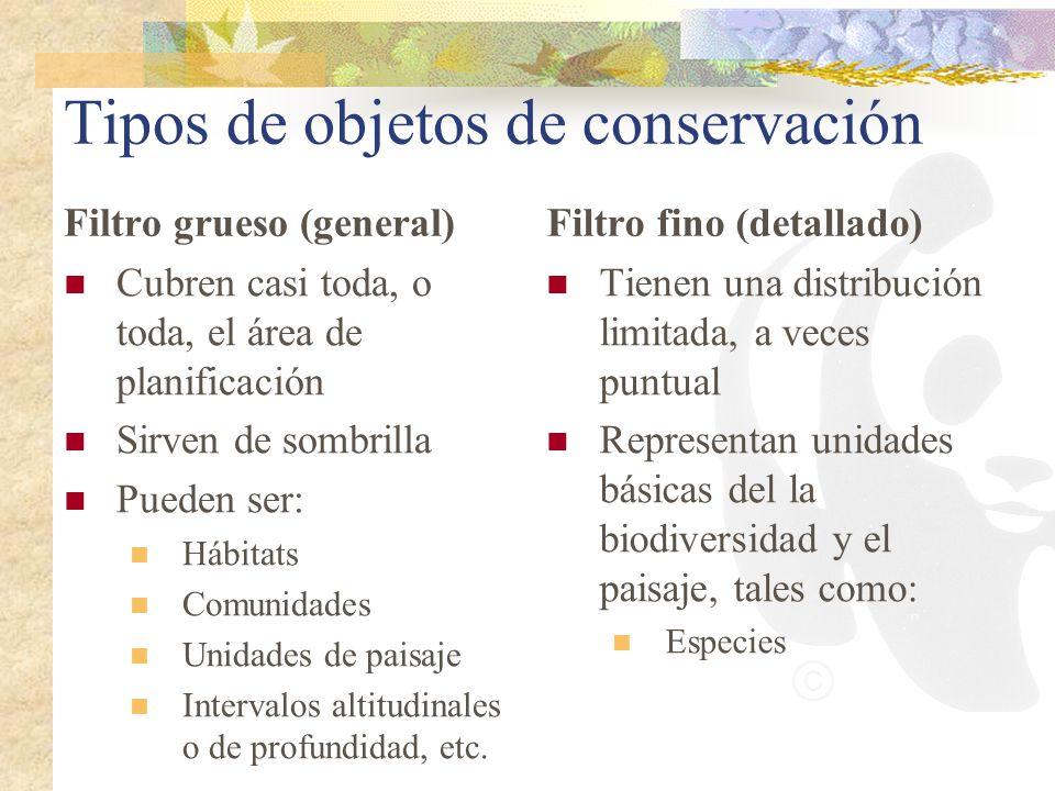 Tipos de objetos de conservación Filtro grueso (general) Cubren casi toda, o toda, el área de planificación Sirven de sombrilla Pueden ser: Hábitats C