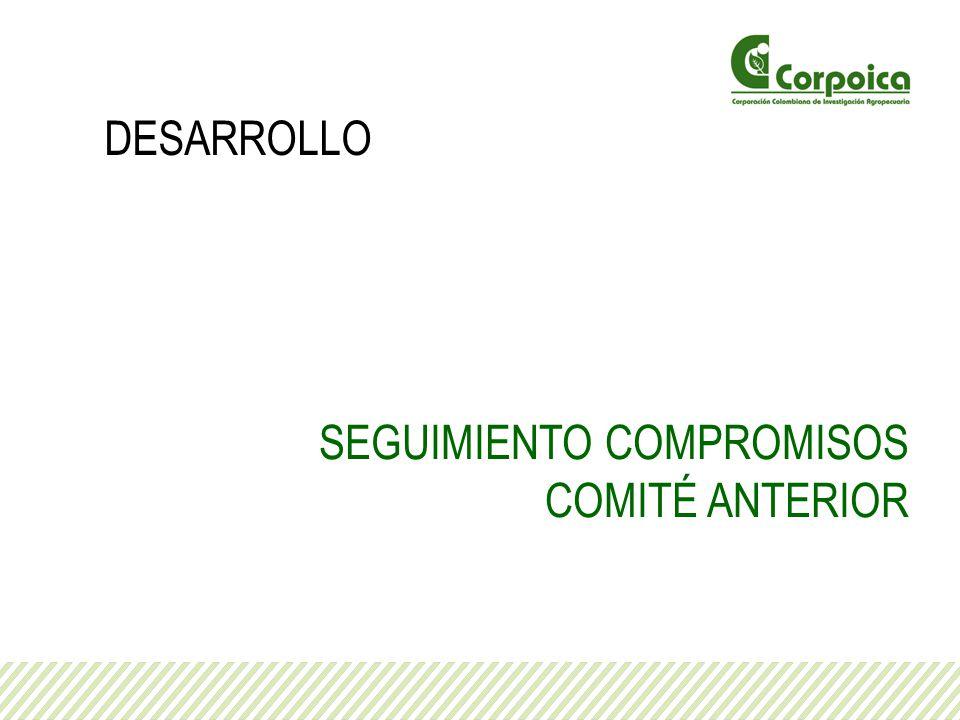 SEGUIMIENTO COMPROMISOS COMITÉ ANTERIOR DESARROLLO