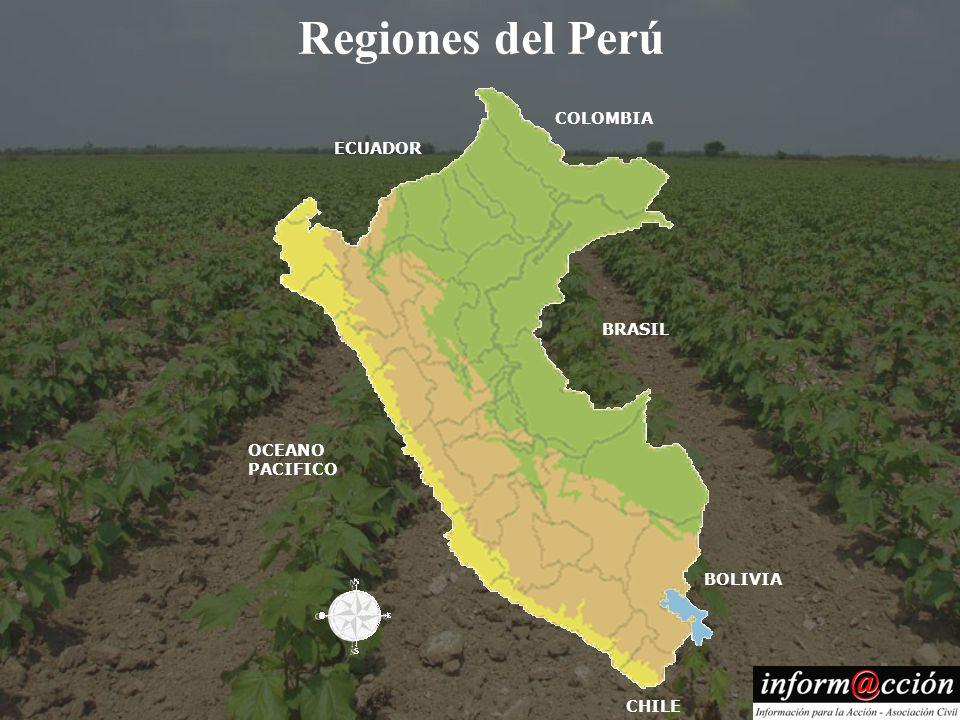 Regiones del Perú ECUADOR COLOMBIA BRASIL BOLIVIA OCEANO PACIFICO CHILE