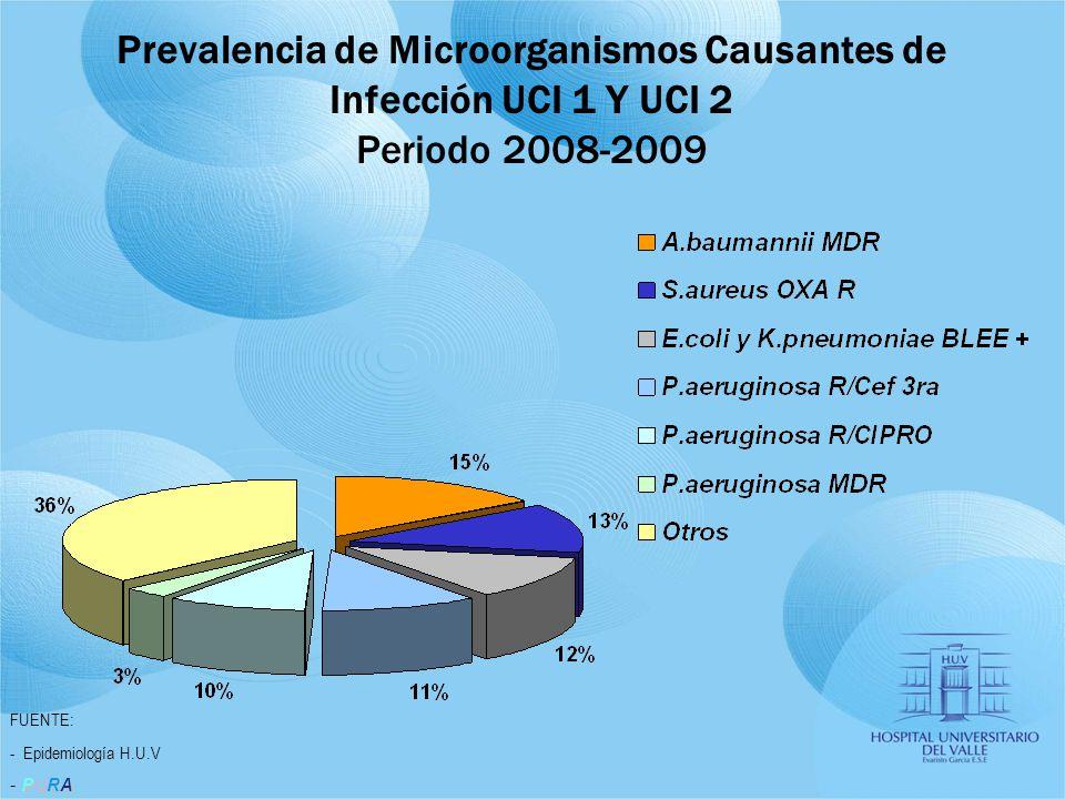 FUENTE: - Epidemiología H.U.V PURA - PURA Prevalencia de Microorganismos Causantes de Infección UCI 1 Y UCI 2 Periodo 2008-2009