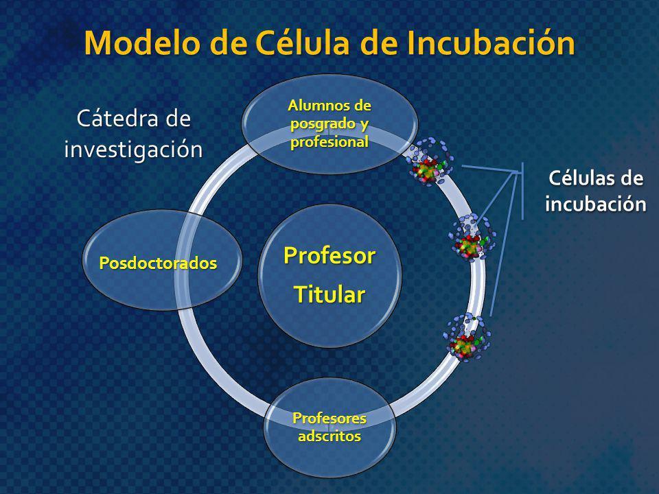 ProfesorTitular Alumnos de posgrado y profesional Profesores adscritos Modelo de Célula de Incubación Cátedra de investigación Posdoctorados Células d