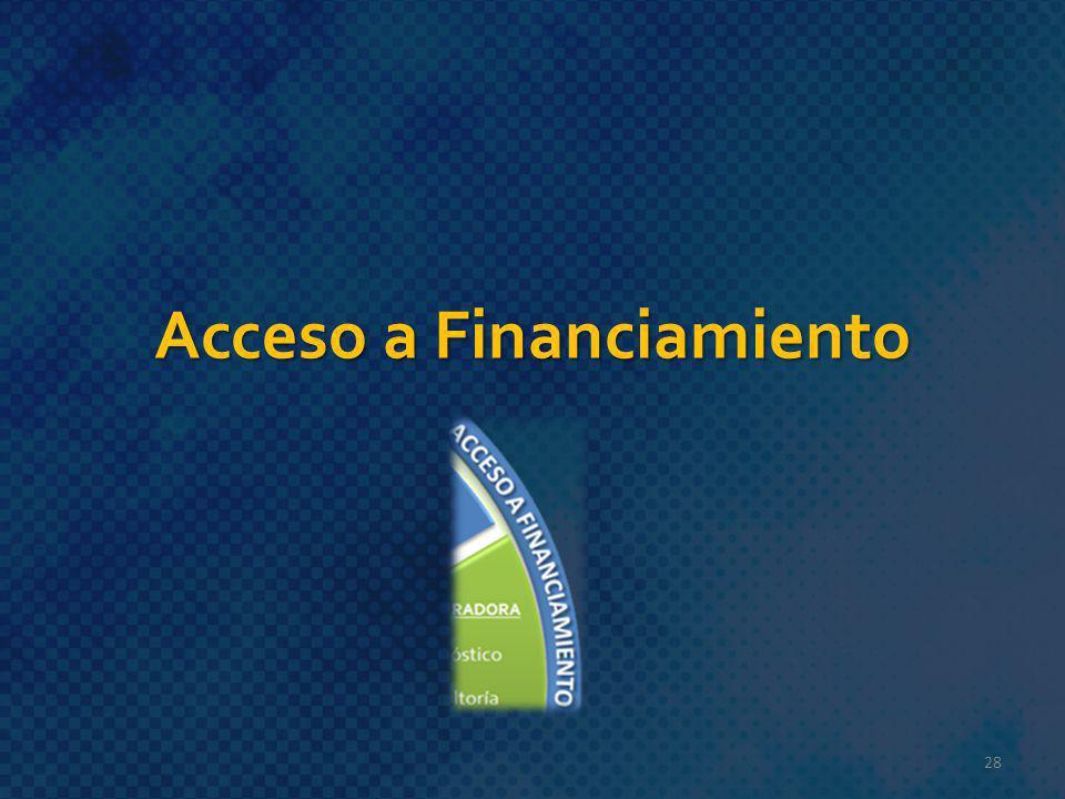Acceso a Financiamiento 28