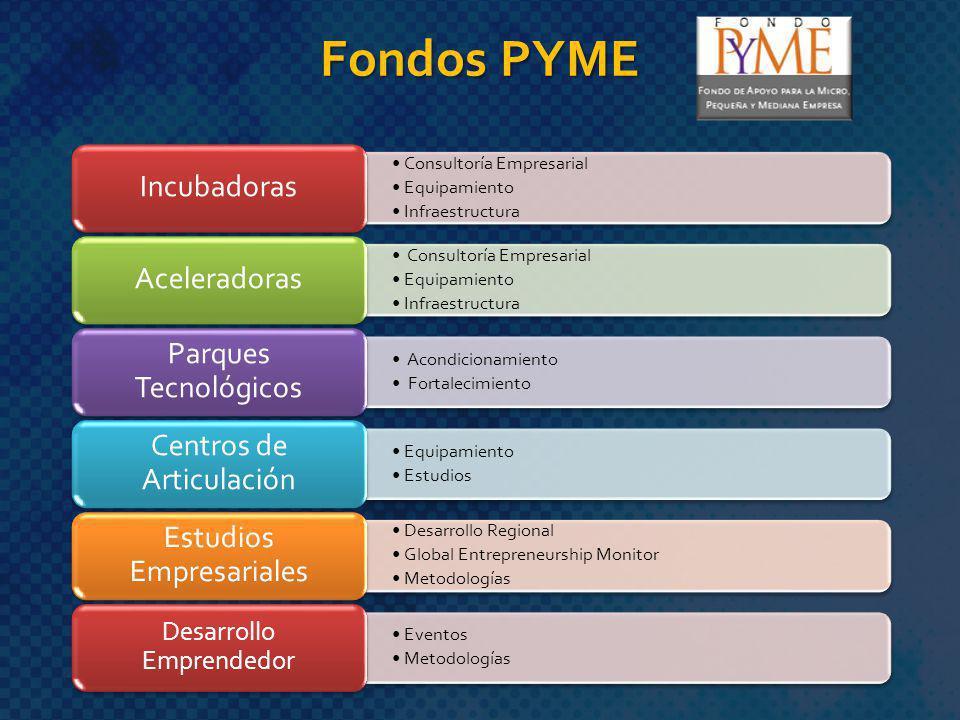 Fondos PYME Consultoría Empresarial Equipamiento Infraestructura Incubadoras Consultoría Empresarial Equipamiento Infraestructura Aceleradoras Acondic