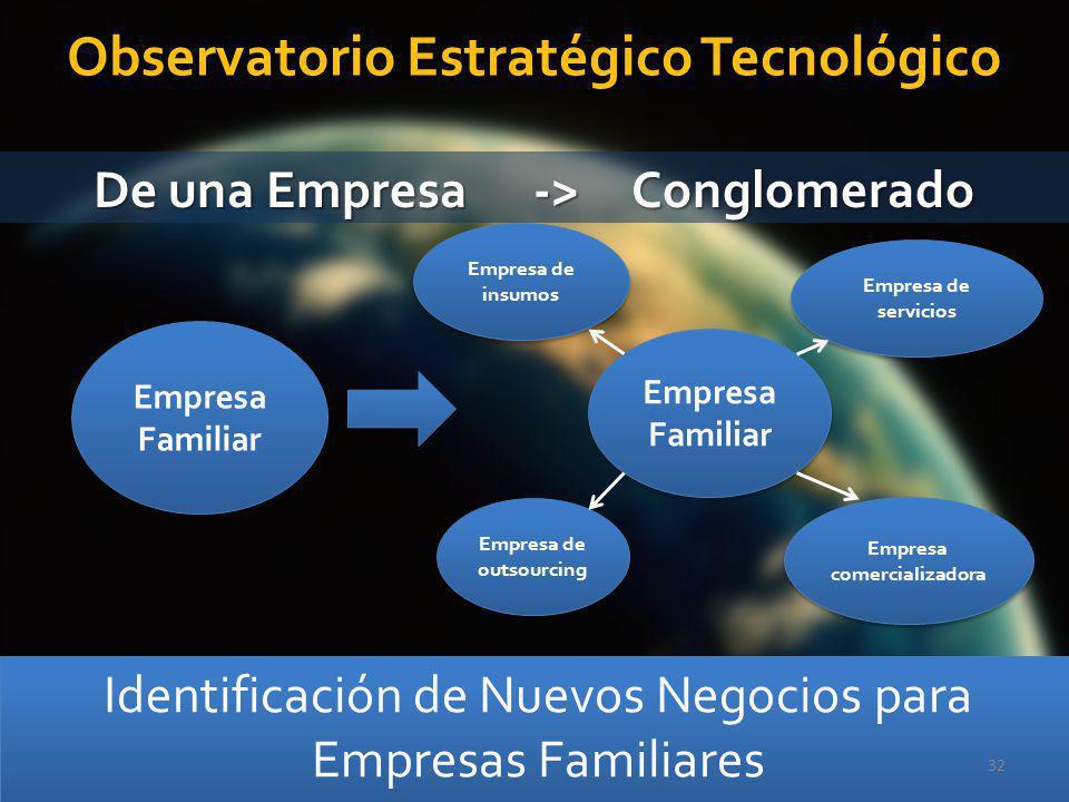 Identificación de Nuevos Negocios para Empresas Familiares 32 Empresa Familiar Empresa Familiar Empresa Familiar Empresa Familiar Empresa de insumos E