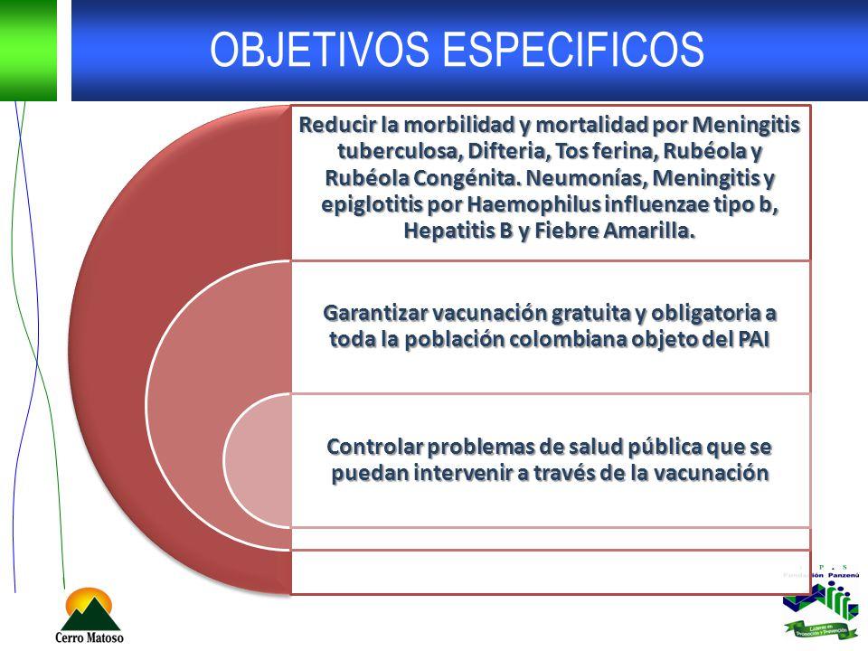 OBJETIVOS ESPECIFICOS Reducir la morbilidad y mortalidad por Meningitis tuberculosa, Difteria, Tos ferina, Rubéola y Rubéola Congénita. Neumonías, Men