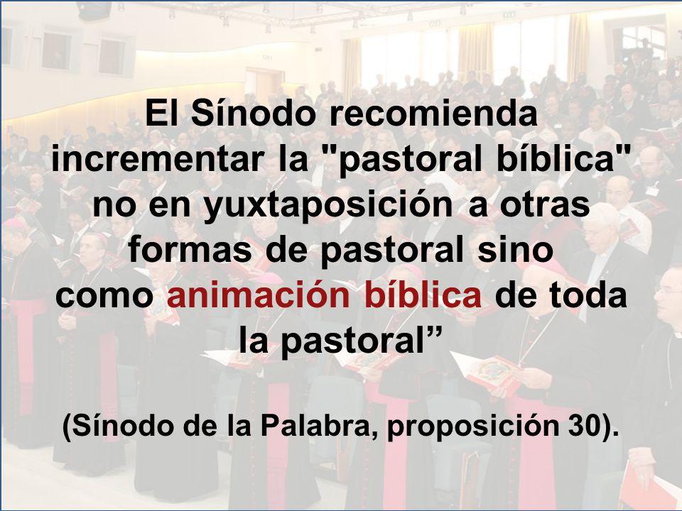 El Sínodo recomienda incrementar la pastoral bíblica no en yuxtaposición a otras formas de pastoral sino como animación bíblica de toda la pastoral (Sínodo de la Palabra, proposición 30).