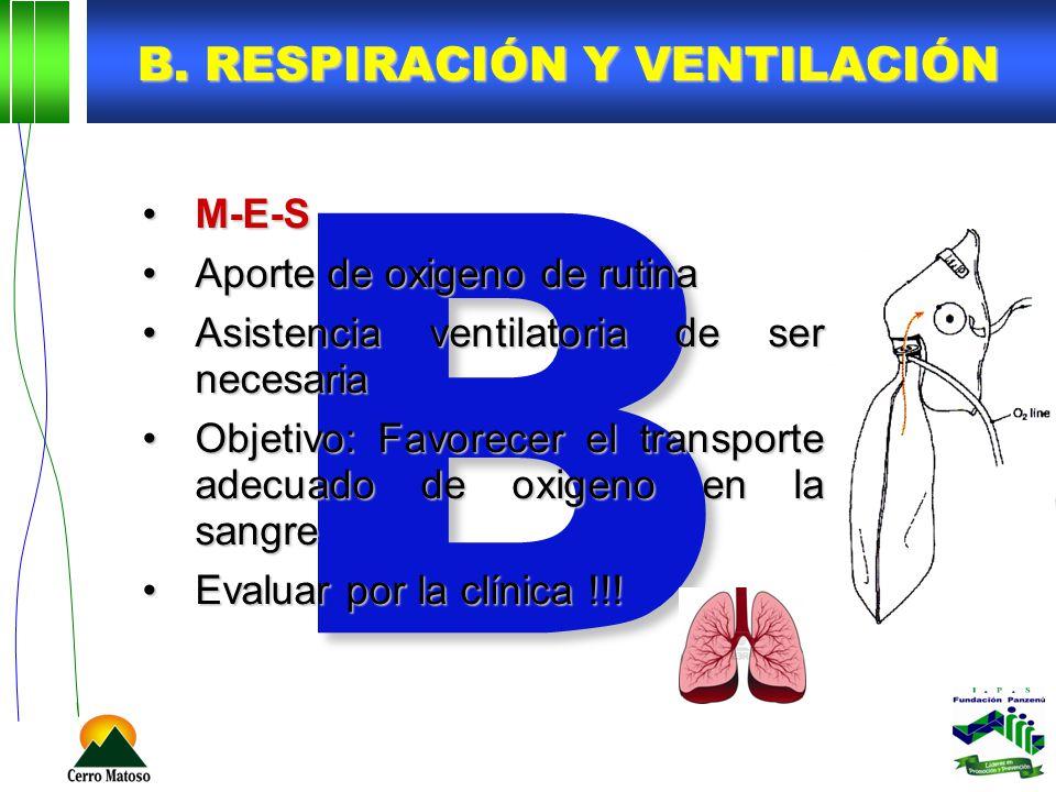 B B. RESPIRACIÓN Y VENTILACIÓN M-E-SM-E-S Aporte de oxigeno de rutinaAporte de oxigeno de rutina Asistencia ventilatoria de ser necesariaAsistencia ve