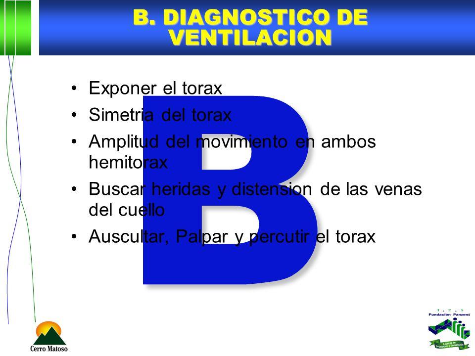 B B. DIAGNOSTICO DE VENTILACION Exponer el torax Simetria del torax Amplitud del movimiento en ambos hemitorax Buscar heridas y distension de las vena