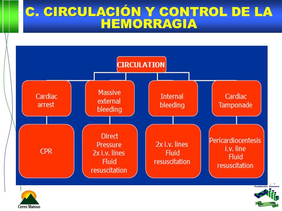 CIRCULACIÓN C. CIRCULACIÓN Y CONTROL DE LA HEMORRAGIA