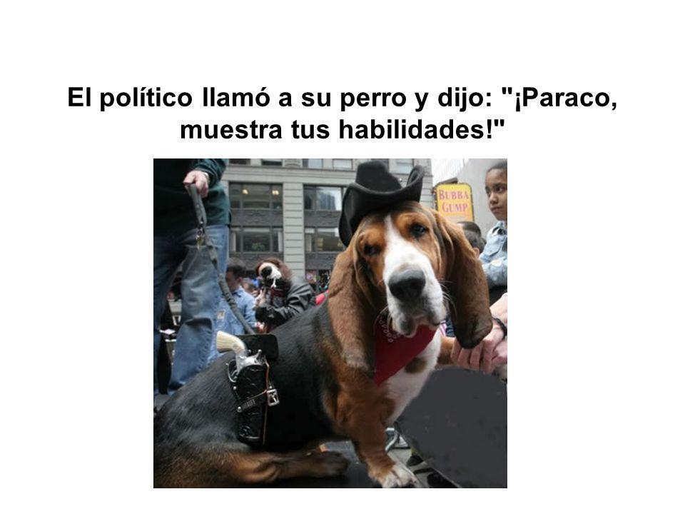 El político llamó a su perro y dijo: ¡Paraco, muestra tus habilidades!