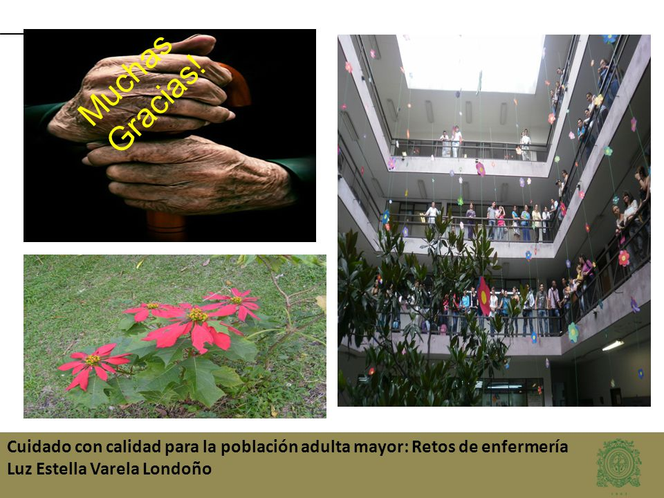 Cuidado con calidad para la población adulta mayor: Retos de enfermería Luz Estella Varela Londoño Muchas Gracias!
