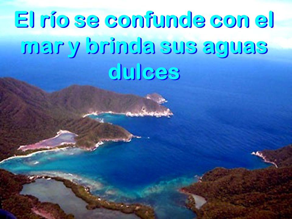 El río al acercarse al mar es de aguas profundas