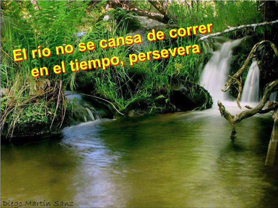 El río no se cansa de correr en el tiempo, persevera E l r í o n o s e c a n s a d e c o r r e r e n e l t i e m p o, p e r s e v e r a