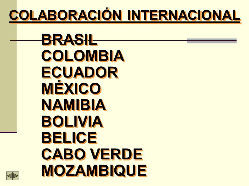 INSERCIÓN REGIONAL Instituto Latino-Americano y Caribeño (IPLAC) Cátedra UNESCO.