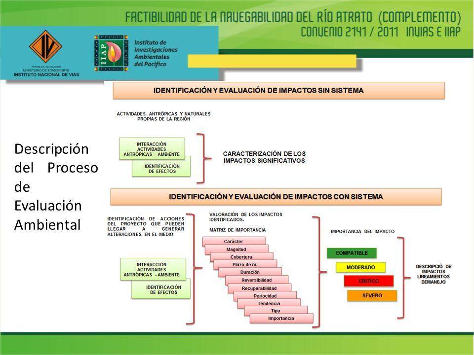Descripción del Proceso de Evaluación Ambiental