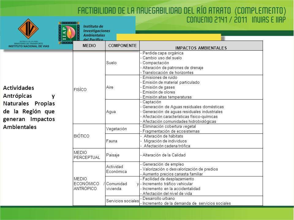 Sustento Normativo Decreto 2820 de 2010: Artículo 21.
