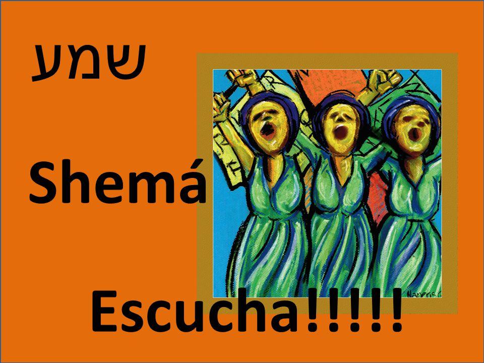 שמע Shemá Escucha!!!!!