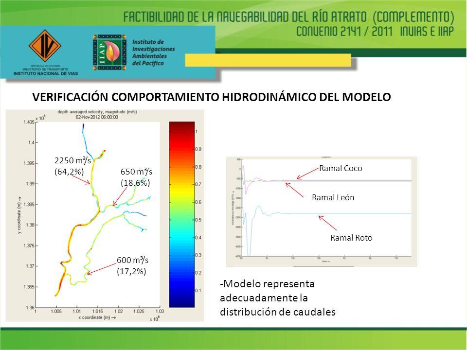 VERIFICACIÓN COMPORTAMIENTO HIDRODINÁMICO DEL MODELO 600 m³/s (17,2%) Ramal Roto Ramal León Ramal Coco 2250 m³/s (64,2%) 650 m³/s (18,6%) -Modelo repr