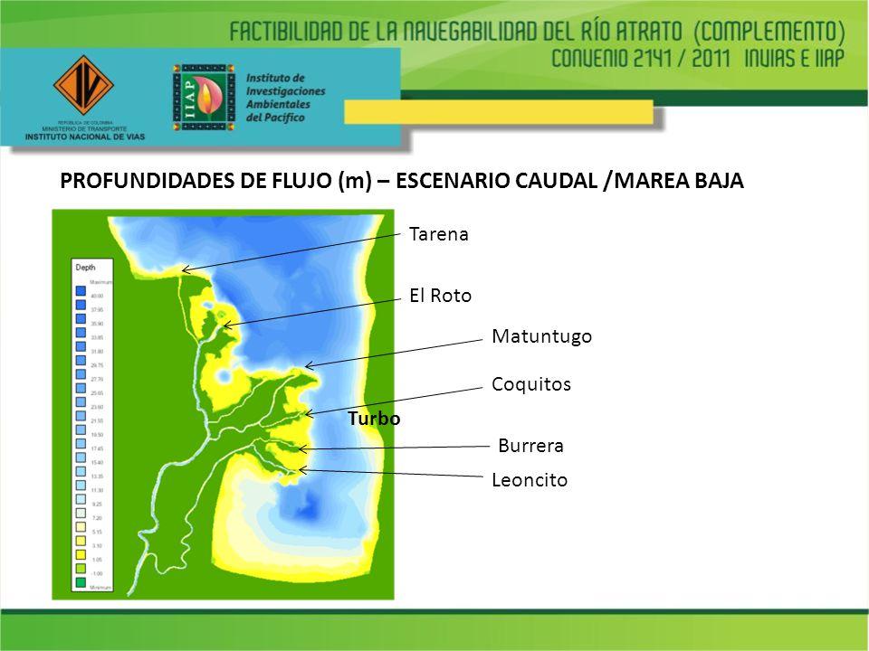 PROFUNDIDADES DE FLUJO (m) – ESCENARIO CAUDAL /MAREA BAJA Leoncito Turbo Burrera Coquitos Matuntugo El Roto Tarena