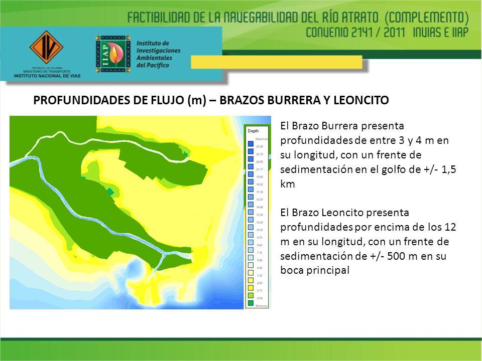 PROFUNDIDADES DE FLUJO (m) – BRAZOS BURRERA Y LEONCITO El Brazo Burrera presenta profundidades de entre 3 y 4 m en su longitud, con un frente de sedim