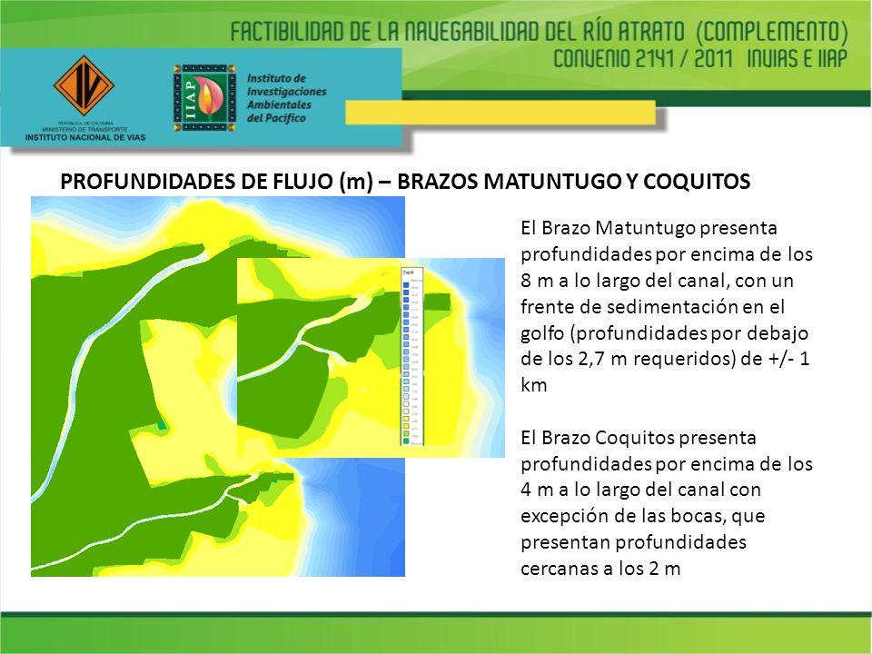 PROFUNDIDADES DE FLUJO (m) – BRAZOS MATUNTUGO Y COQUITOS El Brazo Matuntugo presenta profundidades por encima de los 8 m a lo largo del canal, con un