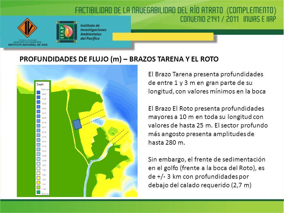 PROFUNDIDADES DE FLUJO (m) – BRAZOS TARENA Y EL ROTO El Brazo Tarena presenta profundidades de entre 1 y 3 m en gran parte de su longitud, con valores