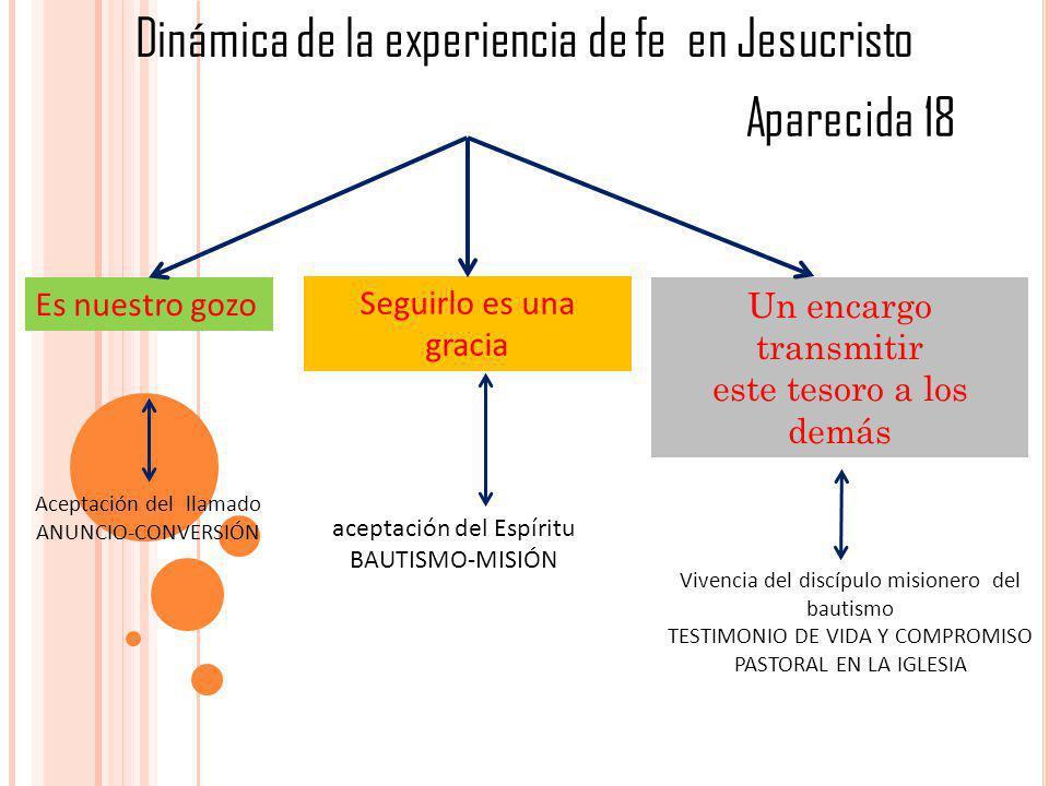 Dinámica de la experiencia de fe en Jesucristo Es nuestro gozo Seguirlo es una gracia Un encargo transmitir este tesoro a los demás Aceptación del lla