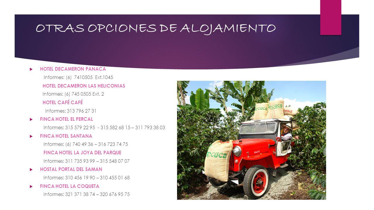OTRAS OPCIONES DE ALOJAMIENTO HOTEL DECAMERON PANACA Informes: (6) 7410505 Ext.1045 HOTEL DECAMERON LAS HELICONIAS Informes: (6) 745 0505 Ext. 2 HOTEL