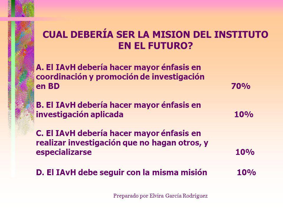 Preparado por Elvira García Rodríguez CUAL DEBERÍA SER LA MISION DEL INSTITUTO EN EL FUTURO.